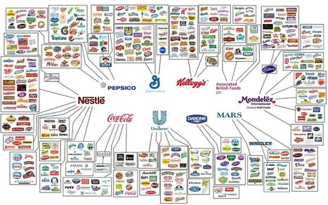 This Infographic Shows How Only 10 Companies Own All The World's Brands | Advocating a Wealth Threshold | Scoop.it