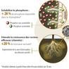 Agriculture et Développement