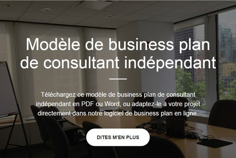 Modele De Business Plan De Consultant In