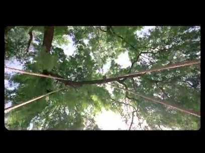Summer 2007 telugu dubbed movie torrent free download