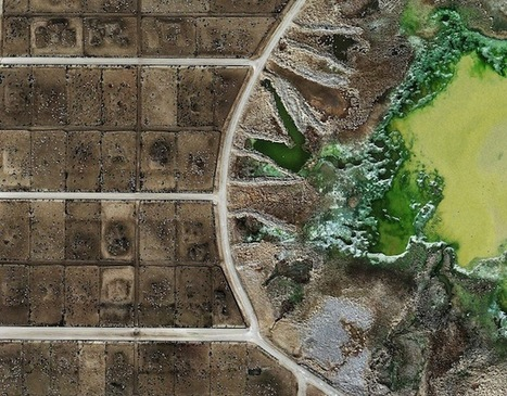 Factory Food From Above: Satellite Images of Industrial Farms | green infographics | Scoop.it