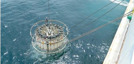 Fukushima : il y a toujours des fuites radioactives dans l'océan. En voici la preuve | Japan Tsunami | Scoop.it