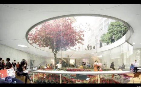 WATCH: Stunning New Library Design Revealed | The Scoop on Libraries | Scoop.it