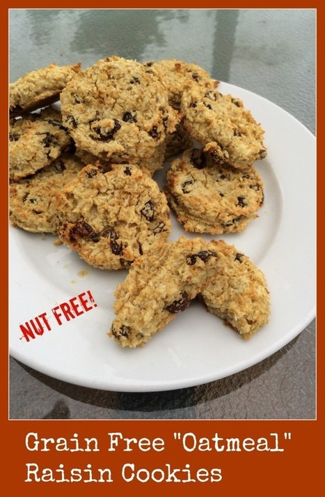 Not Oatmeal Raisin Cookies (Grain Free, Dairy Free, Nut Free) - Gutsy By Nature | Truly Healthy Recipes | Scoop.it
