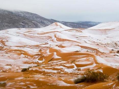 Snow falls in the Sahara desert for the first time in nearly 40 years | The Landscape Café | Scoop.it