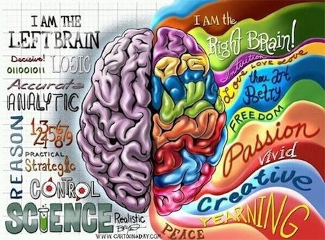 Brain Check | Les infographies ! | Scoop.it