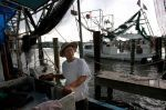 Gulf Fishermen Reel from Seafood Troubles | Coffee Party Science | Scoop.it