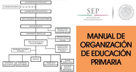Manual de organización de Primaria: funciones, responsabilidades y limites de autoridad   Material para maestros   Modelos Educativos   Scoop.it