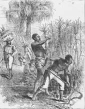 Colonial Cemetery - Slave Markers in Newport, RI | Newport, RI | Scoop.it