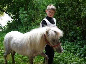 Toutes les images du concours de chevaux de loisirs | Cheval et Nature | Scoop.it