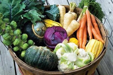 Grow Your Best Fall Garden Vegetables: What, When and How   Garden Ideas by Team Pendley   Scoop.it