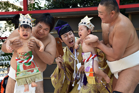Sensoji Temple Festival for Babies Crying in Tokyo | inspiration photos | picturescollections | Scoop.it