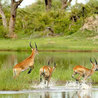 Southern Africa:Tourism