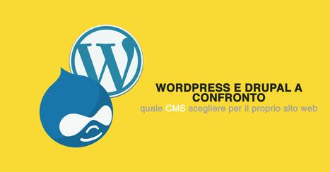 Wordpress e Drupal a confrontro: è tempo di fare chiarezza - Seeweb | seeweb | Scoop.it