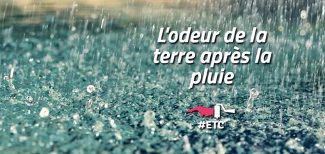 Le nom de l'odeur de la terre après la pluie | DictioNet | Scoop.it