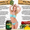 HAVE YOU ANY IDEA ABOUT GARCINIA CAMBOGIA ELITE