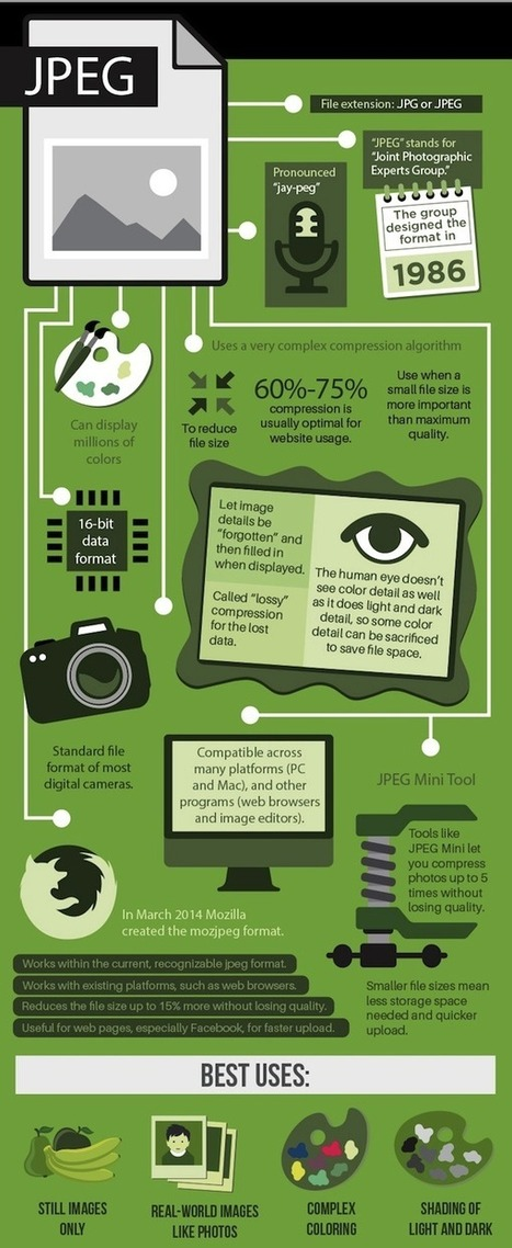 Infographic: When To Use JPEG, GIF, PNG When Saving Images - DesignTAXI.com | contentcurator tools | Scoop.it