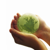 Green, CSR and Sustainability
