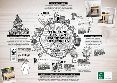 De quel bois se meuble-t-on chez IKEA ? | Sustainable Procurement News | Scoop.it