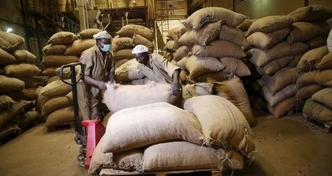 African economic growth dips to two-decade low, World Bank says | Development Economics | Scoop.it