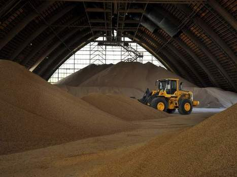 Demand for wood pellets in Europe a boon in southeast U.S. | North Carolina Agriculture | Scoop.it