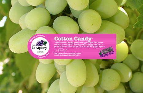 Cotton Candy Grapes?!? | Human Geography is Everything! | Scoop.it