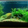 Fishy Business Aquarium