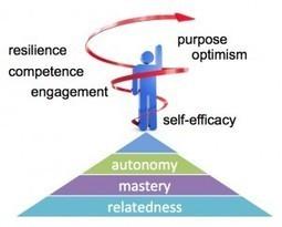 The Positive Side of Video Games: Part III - Media Psychology ...   Compétition vidéoludique motivationelle   Scoop.it