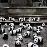 Google Panda Update: New Advice Directly From Google | SEO Tips, Advice, Help | Scoop.it