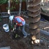Construction Services In San Rafael