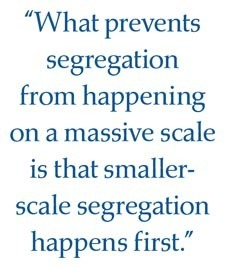 The Math of Segregation | Social Simulation | Scoop.it