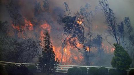 Man Arrested For Arson In California Fire As Marines, Families Flee Camp Pendleton Blaze   Criminal Justice in America   Scoop.it