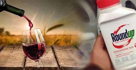UP Magazine - Vous prendriez bien un petit verre de Roundup ? | Sécurité sanitaire des aliments | Scoop.it