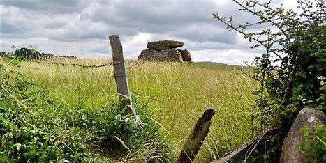 Aveyron : sur les traces des hommes préhistoriques à Buzeins - Midi Libre   Mégalithismes   Scoop.it