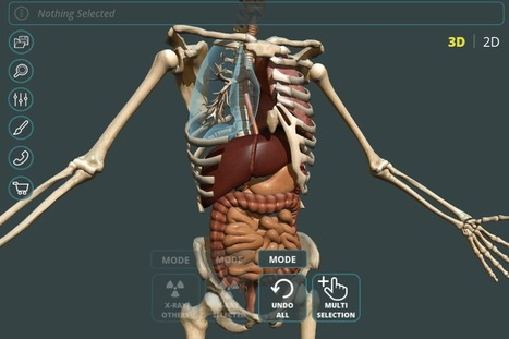 Human Anatomy Atlas For Windows Desktop Crack