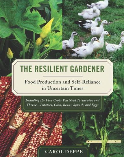 The Resilient Gardener: Food production and self-reliance in uncertain times | Transition Culture | Scoop.it