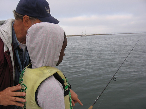 How Helpful is Teaching Nonprofits How to Fish? | Nonprofit Knowledge Sharing | Scoop.it