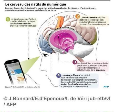 LE CERVEAU NUMÉRIQUE -  L'illetrisme métrique un handicape ! | Fonctionnement du cerveau & états de conscience avancés | Scoop.it