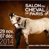 Salon du cheval Bordeaux