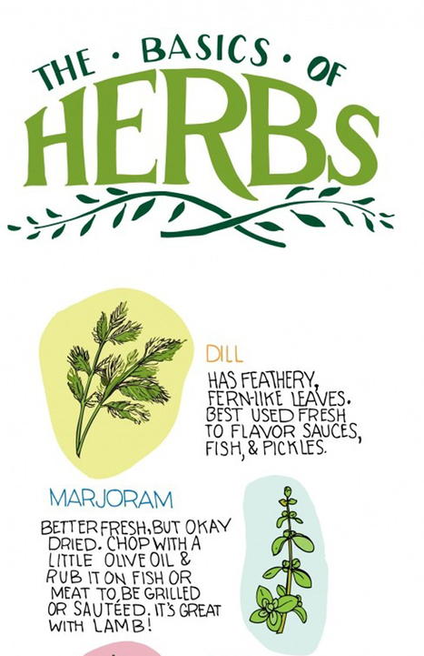 The basics of herbs | Annie Haven | Haven Brand | Scoop.it