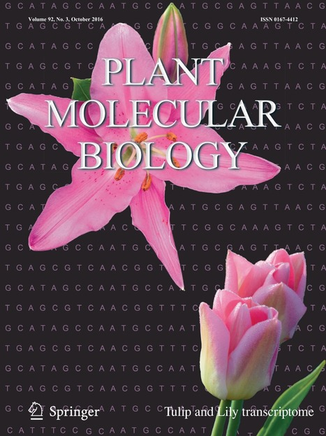 """New WSL publication: """"Elucidating and mining the Tulipa and Lilium transcriptomes"""" in Plant Molecular Biology 