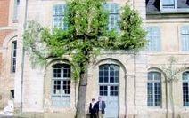 Abbaye de Valloires: le poirier le plus vieux de France menace le bâtiment - La Voix du Nord   Généalogie et histoire, Picardie, Nord-Pas de Calais, Cantal   Scoop.it
