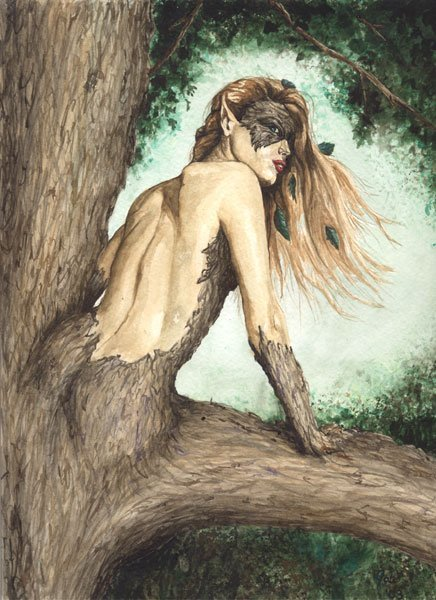 Dryad | They were here and might return | Scoop.it
