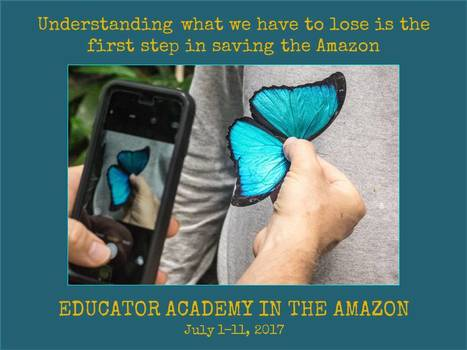 Enrollment OPEN for the 2017 Educator Academy in the Amazon Rainforest | Rainforest EXPLORER:  News & Notes | Scoop.it