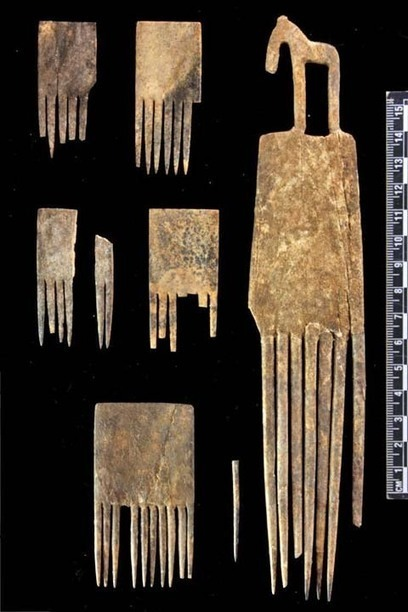 Hierakonpolis Online - Tomb 72 | Egyptology and Archaeology | Scoop.it