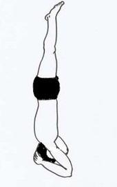 yoga exercise shirshasana headstand pose  y