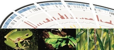 Population Genomics of Fungal and Oomycete Diseases of Animals and Plants, Ascona, Switzerland, 7-11 May 2017 | Plants and Microbes | Scoop.it