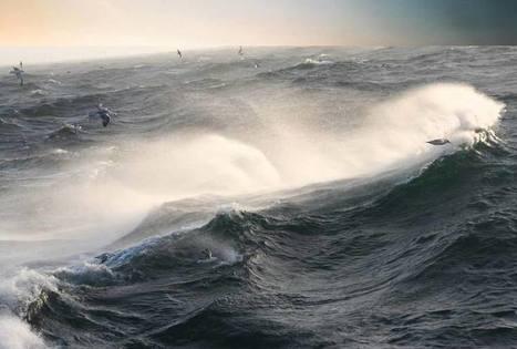 UP Magazine - La haute mer, nouvel objet de négociation pour la communauté internationale, selon l'IDDRI | Vues du monde capitaliste : Communiqu'Ethique fait sa revue de presse | Scoop.it