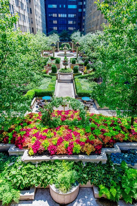 commercial landscape maintenance new york the reason winter is the best time for landscaping