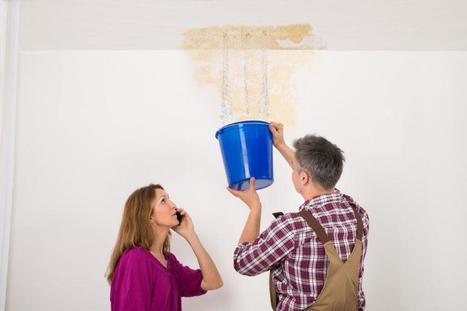 Wet Carpet Restoration - Drymaster Carpet Cleaning